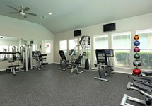 Fitness area with exercise machines