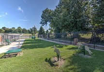 Pet park with agility equipment