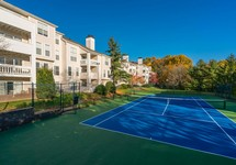 blue tennis court outside of apartment building, trees