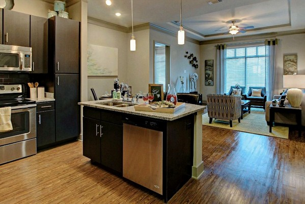 Apartment kitchen with view of living area. Click to view the photo gallery.