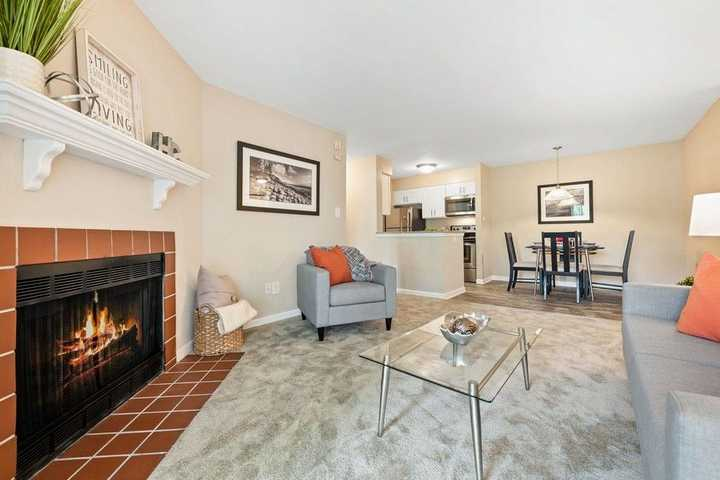 living room, grey carpet, grey furniture, fireplace. Click to view the full size image.