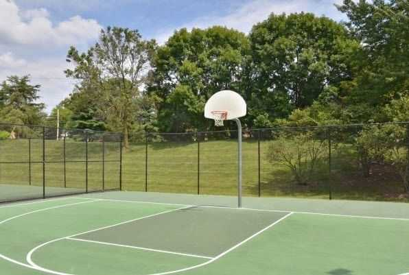 outdoor basketball court surrounded by grass and trees. Click to view the full size image.
