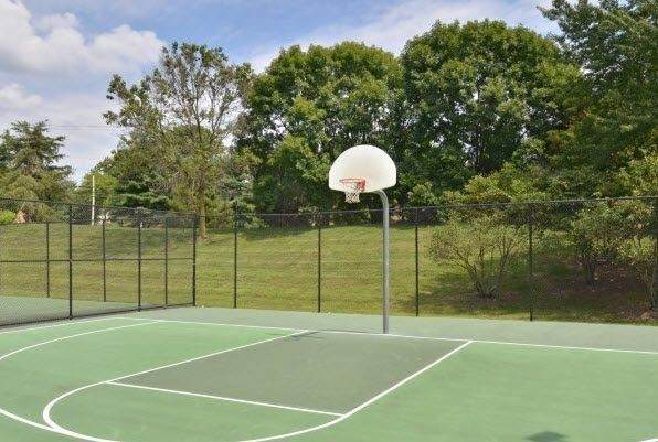 outdoor basketball court surrounded by grass and trees