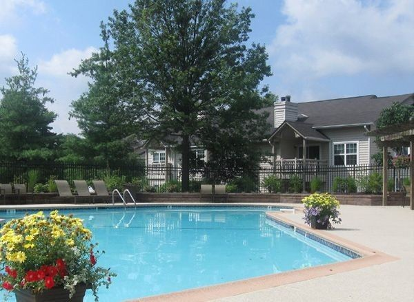pool, back side of resident building, trees