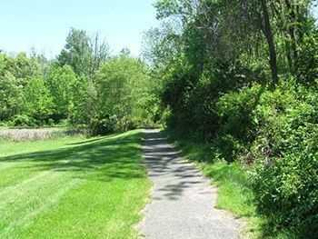 walking trail with grass and trees. Click to view the full size image.