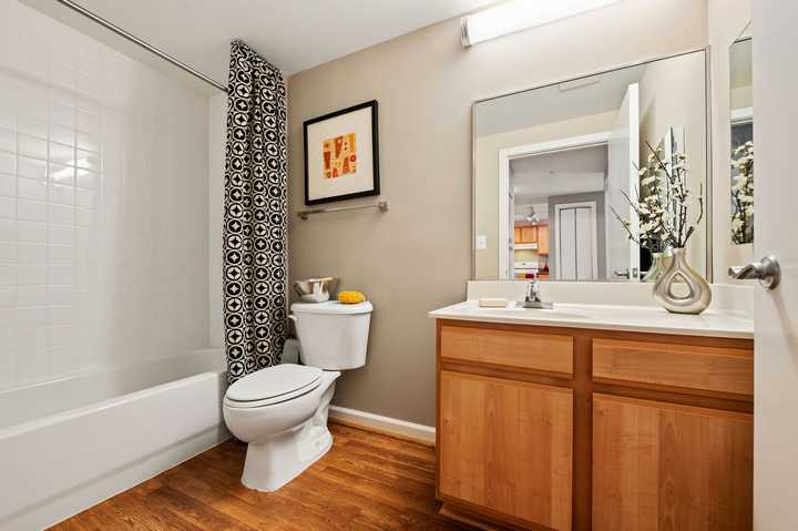 Apartment bathroom. Click to view the full size image.