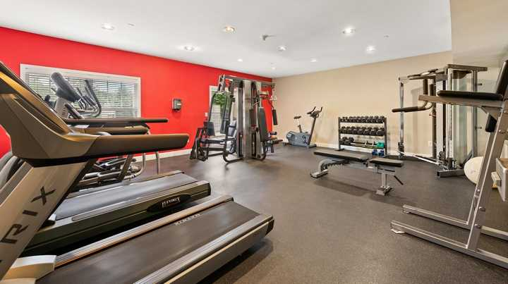 Fitness center with treadmills and weights. Click to view the full size image.