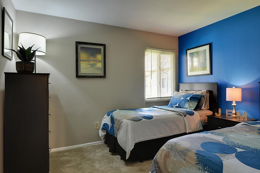 Bedroom with two twin beds and blue accent wall