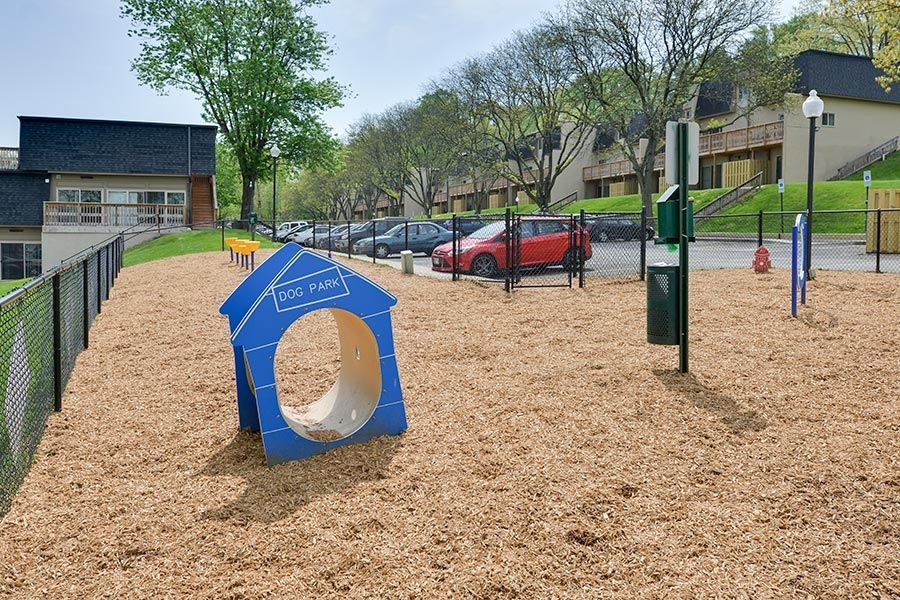Dog park with activities and pet waste station