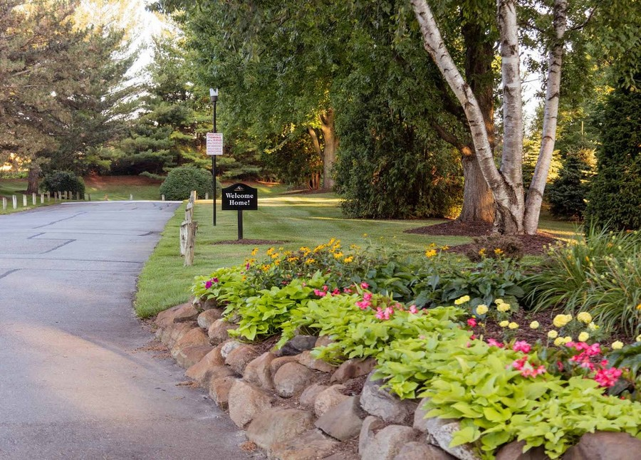 Lush green landscaping and flowers next to a road