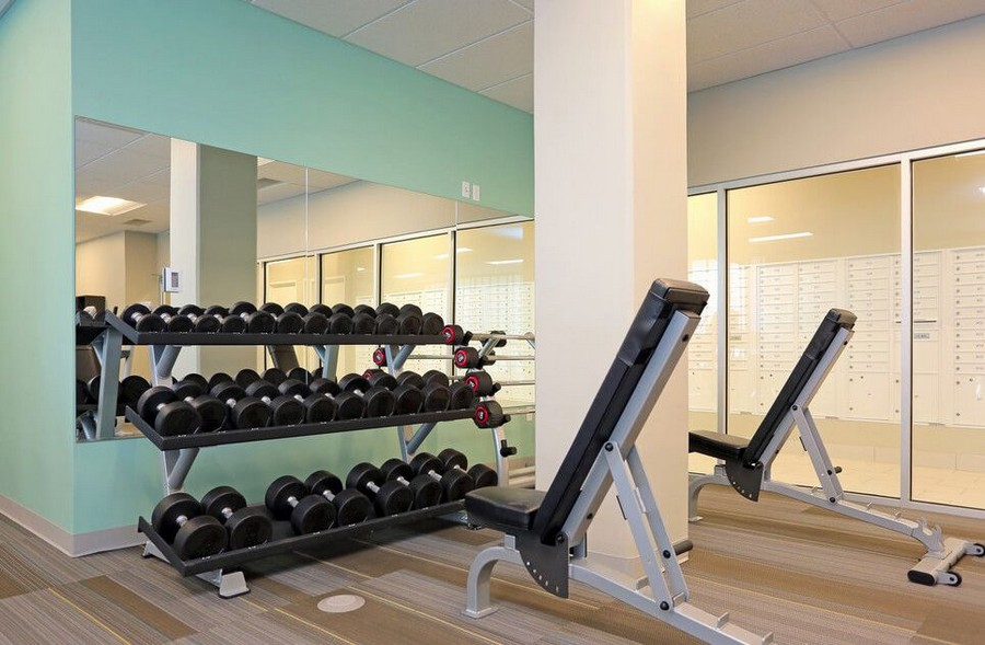 Dumbbells and reclining benches