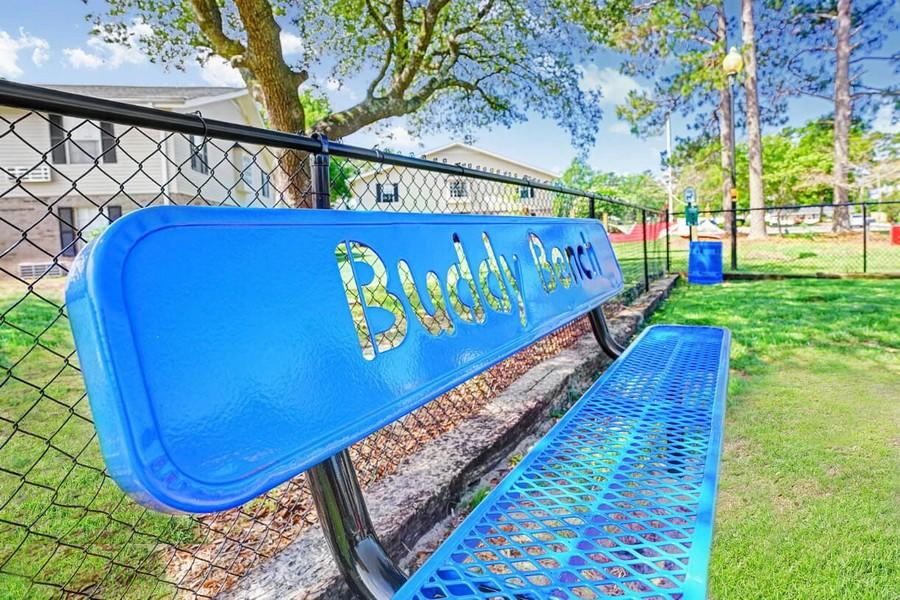 Bench in dog park