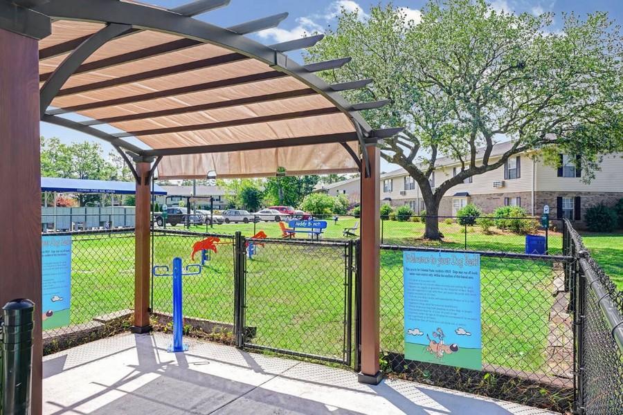 Dog park with agility equipment