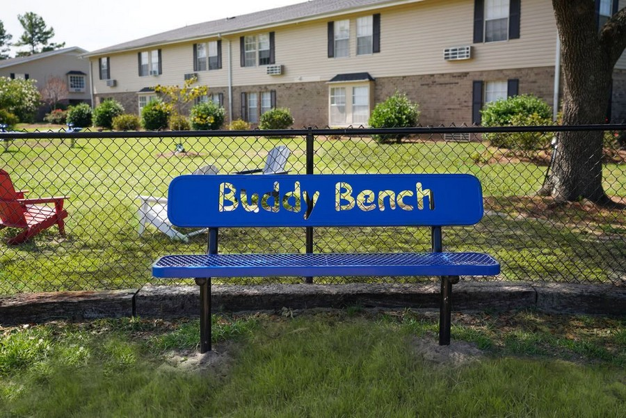 Bench in dog park