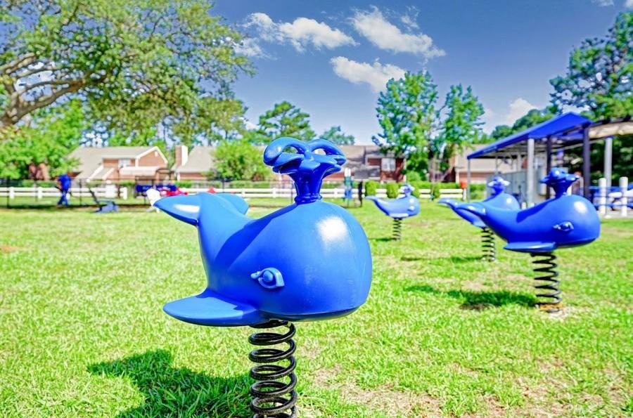Equipment on playground
