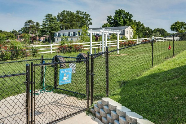Fenced dog park. Click to view the photo gallery.