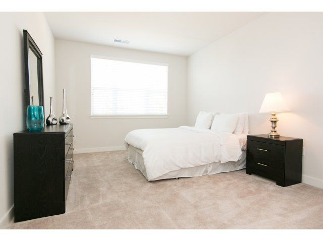expansive bedroom with plush carpet and large window