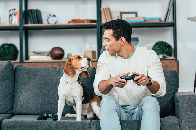 Dog and man sitting on couch