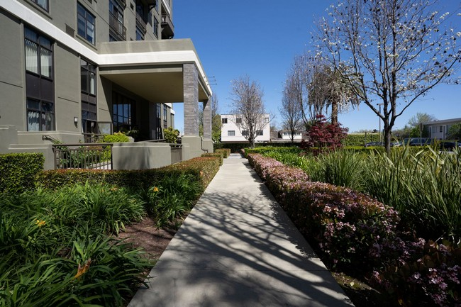 Outside walkway around building with landscaping