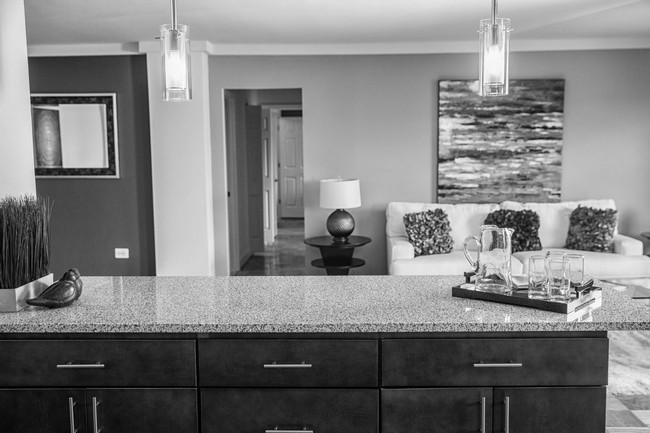 black and white picture of the living area